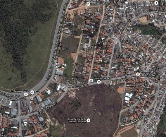 Terreno Industrial À Venda, Jardim Ipaussurama, Campinas. - Te2139