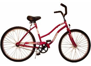 Bicicleta Playera Contra Pedal Rod 24
