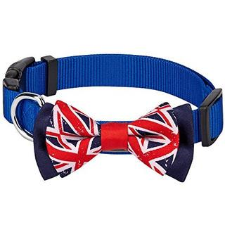 Blueberry Pet Pack De 1 National Pride Bandera Del Reino Un