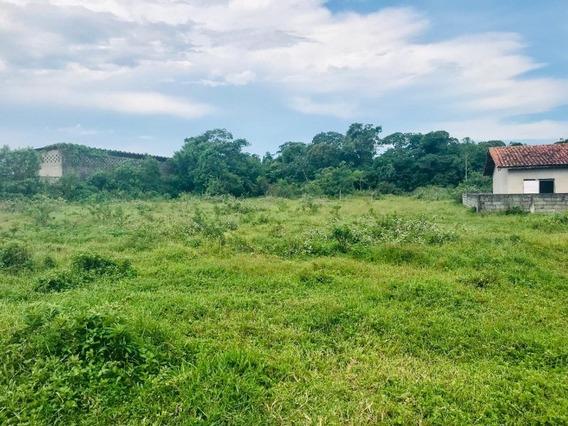 Terreno Em Mongaguá - 1810 - 33669158