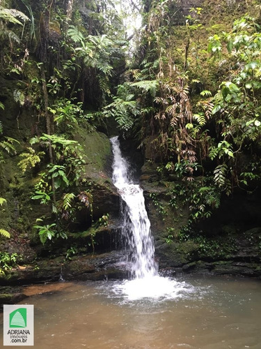 Imagem 1 de 13 de Venda Chácara 40.000 Mts² Com 2 Rego D´agua , Cachoeira, Mata Preservada Corumbá De Goiás - 5392