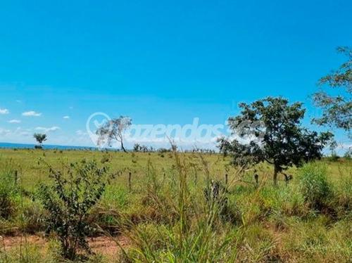 Imagem 1 de 11 de Rural Chacara Com 2 Quartos - 331-v