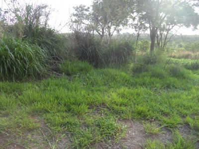 Terreno Em Jardim Dos Pinheiros, Atibaia/sp De 600m² À Venda Por R$ 250.000,00 - Te102809