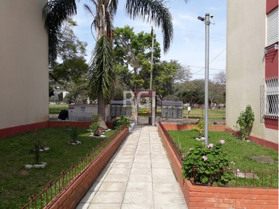 Apartamento Em Vila Nova - El50874912