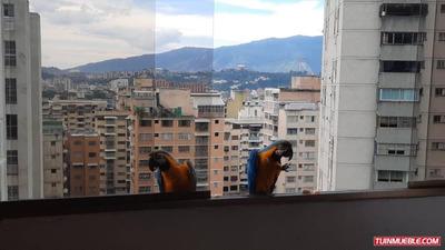 Apartamentos En Venta Colinas De Santa Monica