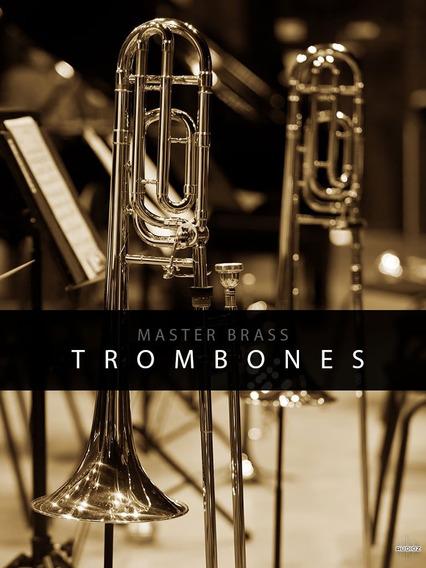 Auddict Master Brass Trombones Kontakt (win&mac)