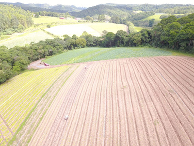 L. Residencial Rural,terrenos Para Formar Chácara, Ibiúna