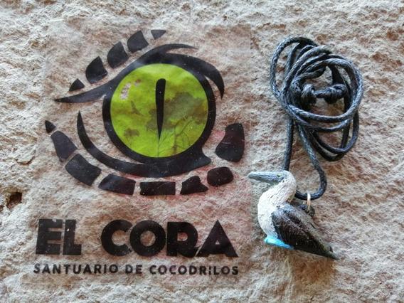 Collar Bobo Patas Azules Santuario De Cocodrilos El Cora