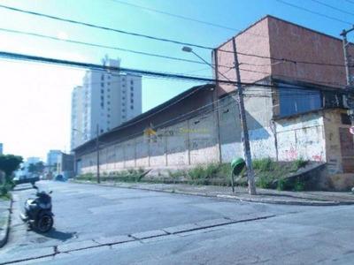 Ótimo Galpão Comercial No Bairro Da Vila Antonieta - 1204
