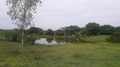 Finca En Venta, Arjona , Bolivar