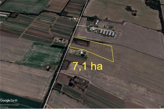 Terreno En Venta Zona Villa Esquiu 7ha