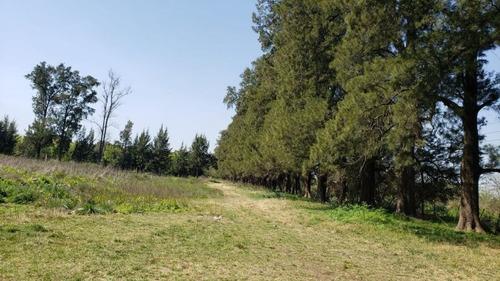 Imagen 1 de 3 de Campo En Venta En Merlo