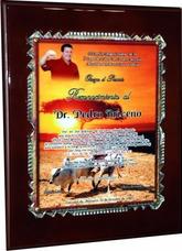 Placas De Reconocimientos Graduacion Eventos Corporativos
