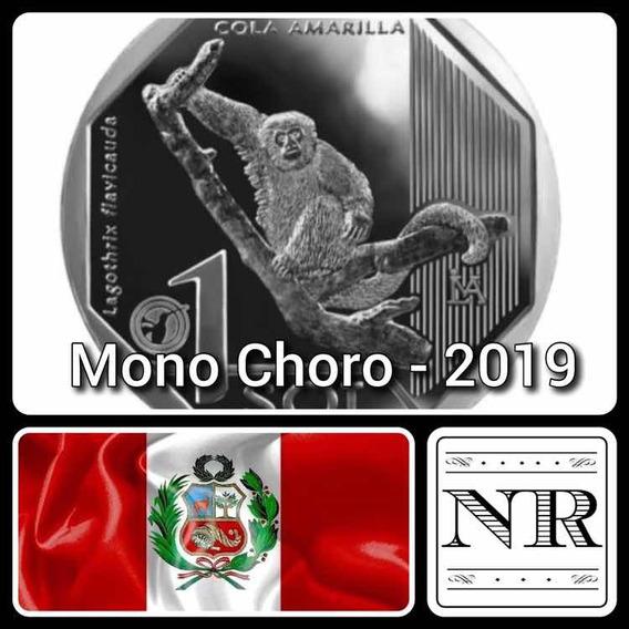 Peru - Mono Choro - Fauna Silvestre 1 Sol 2019