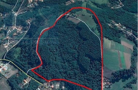 Terreno Para Venda, 330000.0 M2, Pavão (canguera) - São Roque - 1216