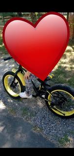 Bicicleta Patona(fat Bike)
