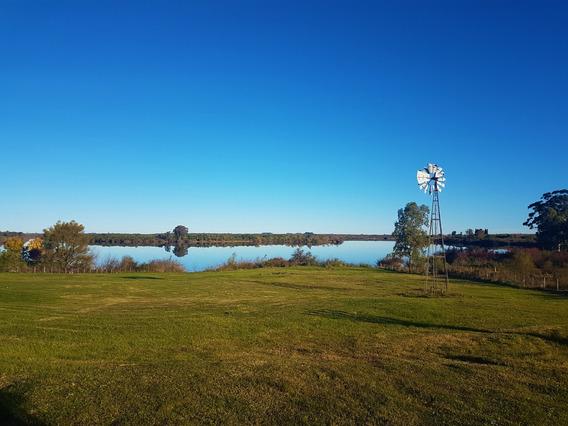 Venta Excelente Chacra En Uruguay Sobre Rio Negro