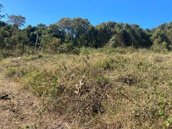 30d* Vendo Terreno Em Lugar Tranquilo Com Área Verde