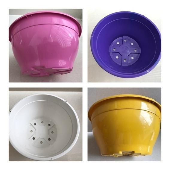 10 Cuias Vasos Coloridos Plantas Rosa Do Deserto Promoção