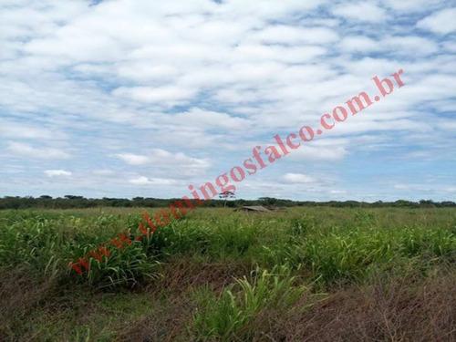 Venda - Fazenda - Zona Rural - Santa Terezinha - Mt - D0392