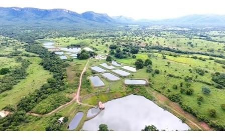 Fazenda Cercada Escriturada C/ Piscicultura Completa (cif)