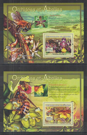 Guinea Orquideas Abejas Insectos Flores 2 Hb Mint