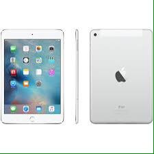 iPad Mini Usado