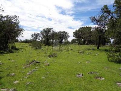 Se Vende O Se Renta Terreno En Tetla Tlaxcala