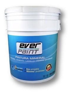 Pintura Mineral Para Fachada 1 Cubeta 19l Everpaint 25 Años