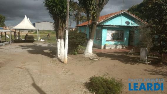Area - Jardim Do Algarve - Sp - 510426