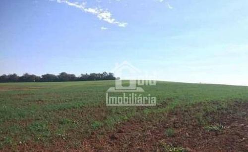 Sítio À Venda, Com 30 Alqueires Por R$ 4.500.000 - Zona Rural - Santa Rita Do Passa Quatro/sp - Si0028