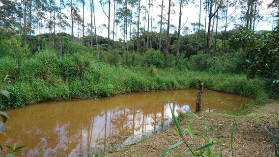 Juquitiba/sitio C/lago/rio/pomar/sede/ref: 04966