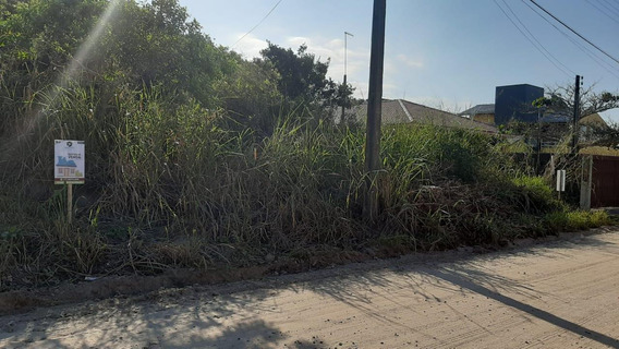 Terreno Em Cambijú, Itapoá/sc De 0m² À Venda Por R$ 230.000,00 - Te619599