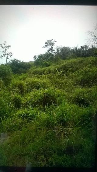 Terrenos En Venta Alto De Escuque, Edo. Trujillo 20-16053 Js
