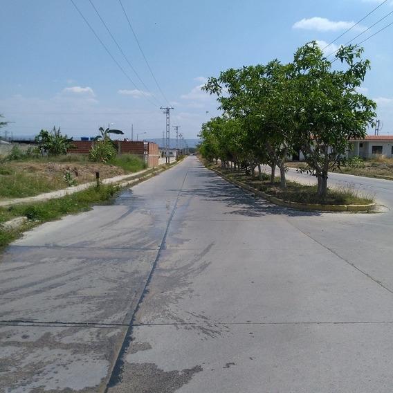 Terreno En Flor Amarillo Fot-148 A.r