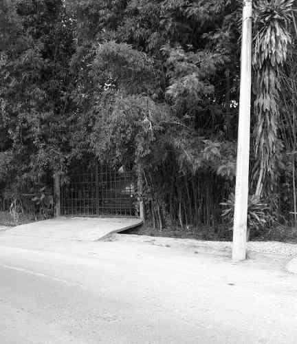 Terreno Comercial En Renta En Temixco, Morelos