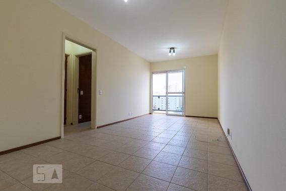 Apartamento Para Aluguel - Vila Itapura, 1 Quarto, 52 - 893046147