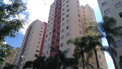 Cidade Lider, Apartamento 3 Dormitórios, Pronto Para Morar
