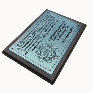 Placa Bronce Egresados Escuela Homenaje Institucion 40x30cm.