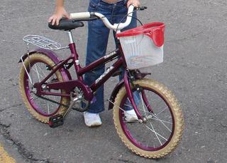 Bicicleta Zonda R14 Con Canasto Y Rueditas Oferta