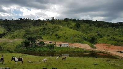 Fazenda Em Brumadinho 43 Ha , Com Muita Água , Lagoa , Casa Sede , Boa Para Gado - 2009