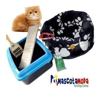 Kit Completo Cama Y Accesorios Para Recibir Un Gato