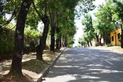 Eyzaguirre / Catedral / Balmaceda / Rivera