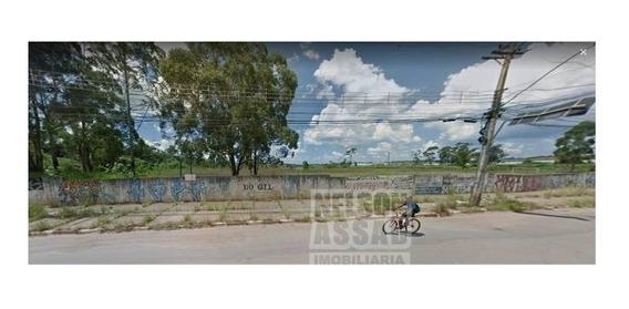 Terreno Para Locação No Bairro Vila Nova Bonsucesso, 78297,40 M - 1888
