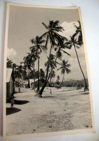 Cartão Postal Antigo Recife-pe Coqueiros