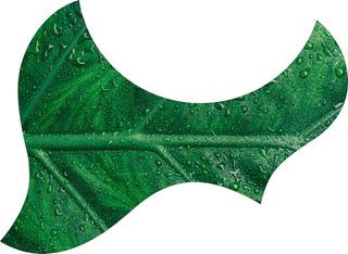 Escudo Palheteira Resinada Violão Aço Jumbo Sônica Botanical