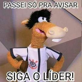 Cavalinho Fantástico Boneco Pelucia Time Futebol Brasileirão