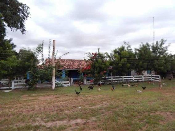Fazenda Cocalhinho Mato Grosso