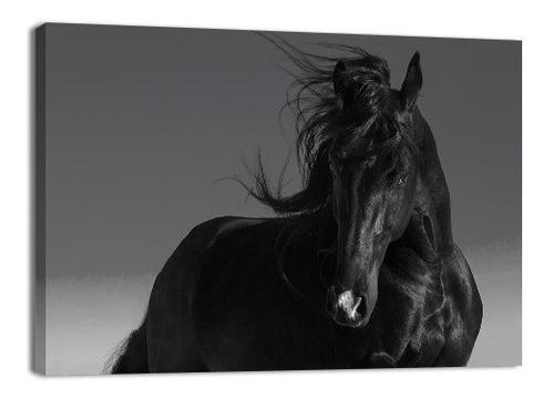 Imagen 1 de 7 de Cuadro Decorativo Animales Caballo Canvas   Black Stall