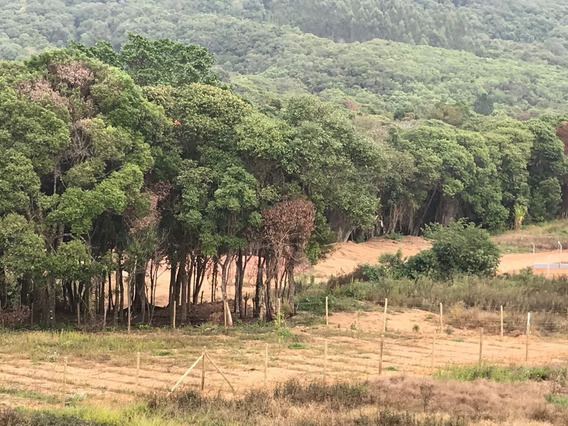 Terrenos Demarcados Com 70% De Infraestrutura Lago P Pesca J